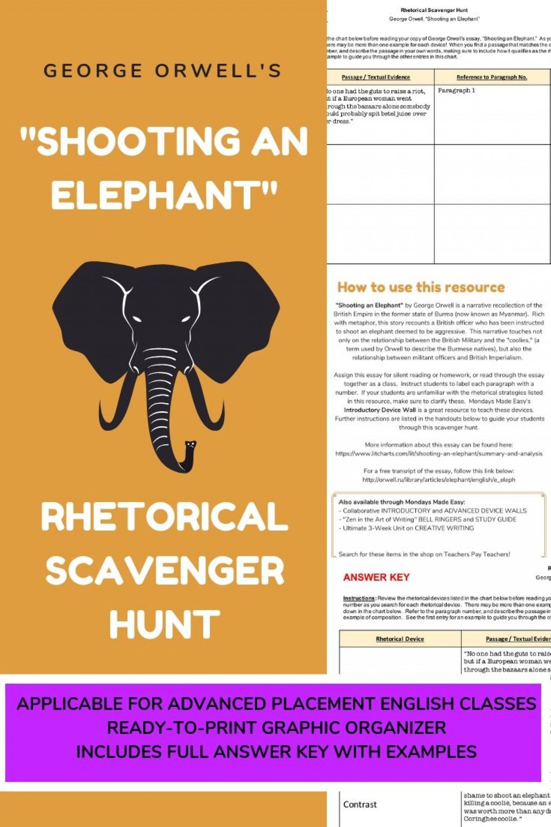An essay on elephant
