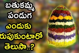 012 Essay On Bathukamma In Telugu Example Dreaded Short Language 320