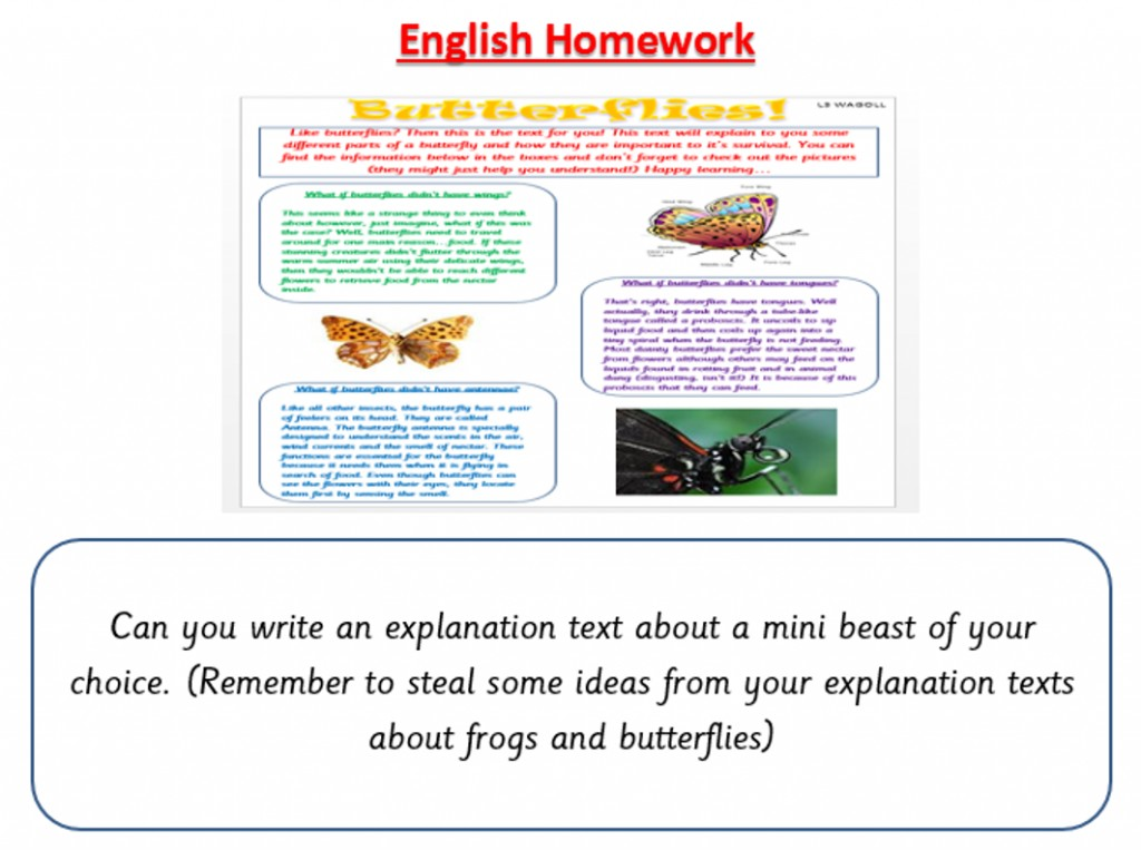 012 Essay Writer Com Professional Writers The Thesis English Hom College Hire Outstanding My Writer.com Pro Writing Reviews Comparative Large