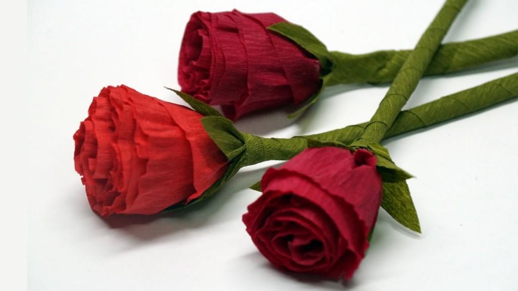 012 Maxresdefault About Rose Flower Essay Unbelievable In Marathi Kannada Language Large