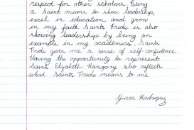 012 Njhs Essay Examples Example Yara Unbelievable Character