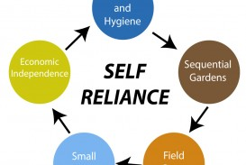 012 Self Reliance Cycle3 Essay Example And Other Formidable Essays Ralph Waldo Emerson Pdf Ekşi