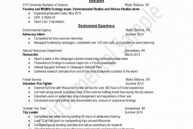 012 Volunteer Resume Samples Luxury Essay On Relation And Use Of With Regard To Volunteering Exa Example Scholarship Surprising Experience Hospital Examples Nursing Home