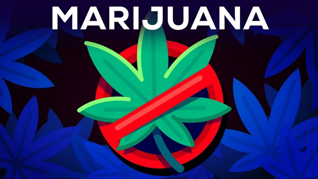 012 Why Marijuanas Should Illegal Essay Example Frightening Be Medical Argumentative Large