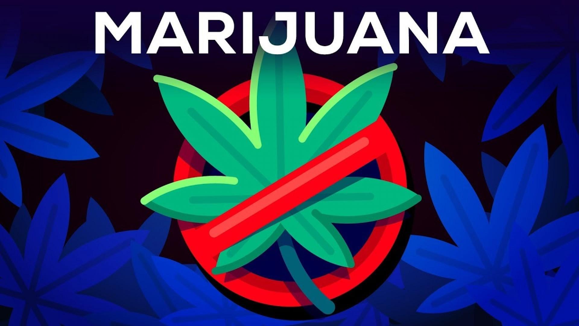 012 Why Marijuanas Should Illegal Essay Example Frightening Be Medical Argumentative 1920