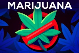012 Why Marijuanas Should Illegal Essay Example Frightening Be Persuasive Argumentative Not