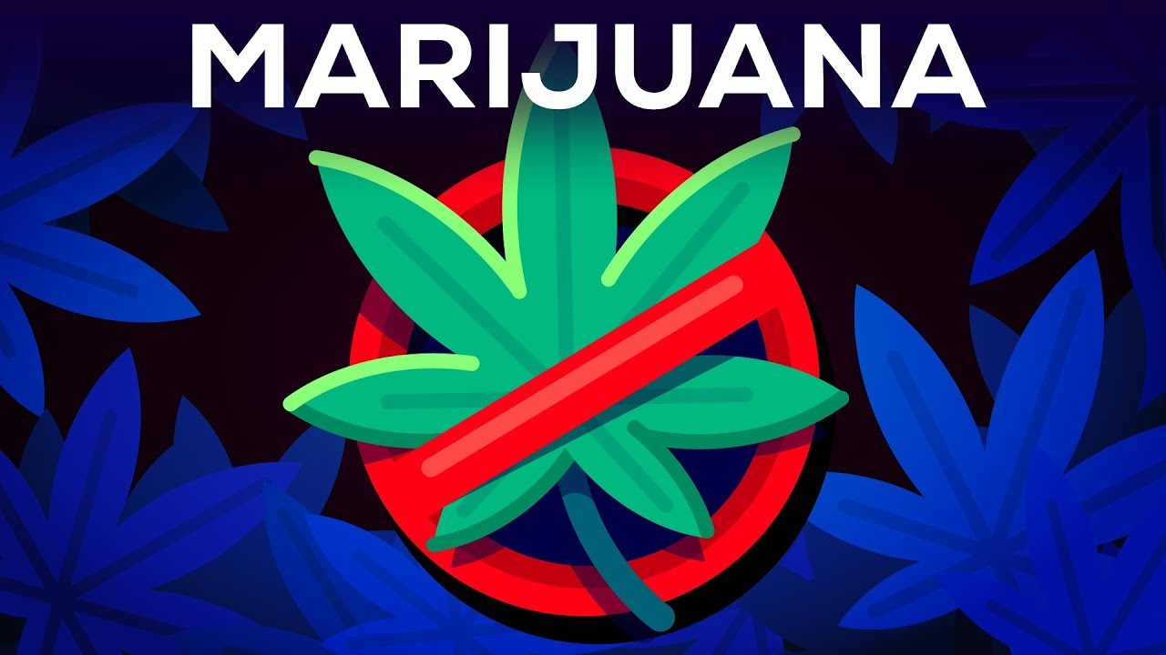 012 Why Marijuanas Should Illegal Essay Example Frightening Be Medical Argumentative Full