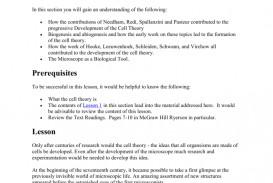 013 009009493 1 Essay Example Argumentative Unique Pdf Rubric High School Writing Sample