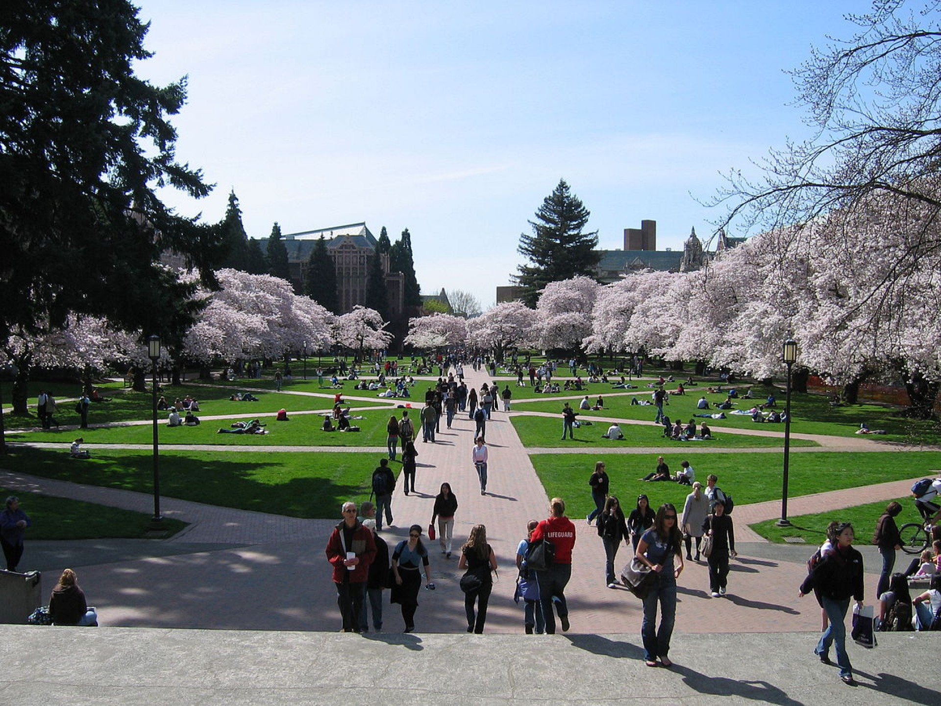 013 1200px University Of Washington Quad2c Spring 2007 Essay Unique Application Examples Prompts Bothell Prompt 1920