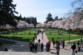 013 1200px University Of Washington Quad2c Spring 2007 Essay Unique Application Examples Prompts Bothell Prompt