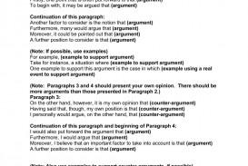 013 Argumentative Essay Hook Examples Example Toefl Samples Academic Good Hooks Writing Template For P Incredible Pdf
