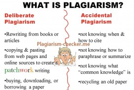 013 College Essay Checker Plagiarism Detector Is P Check Example My For Impressive Free Paper Online Percentage Website Where I Can
