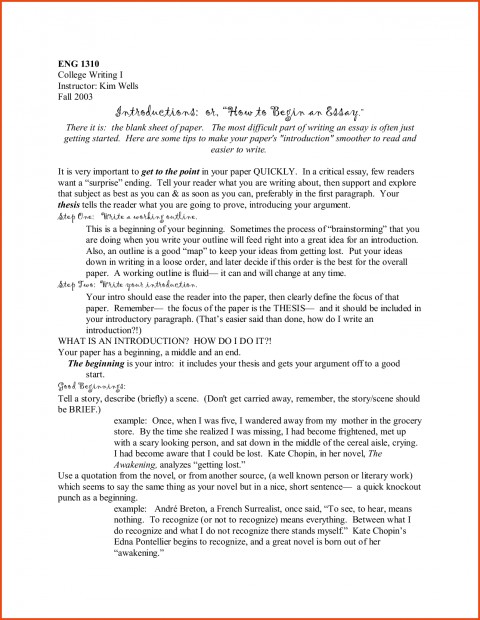 013 College Essays Applications Of Essay Consultant L How To Start An Amazing With A Hook Quote Analysis On Book 480