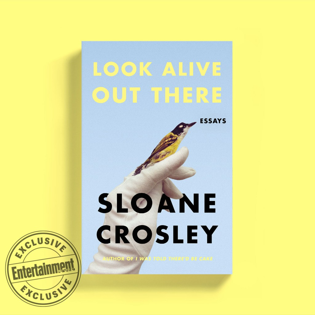 013 Essay Collection Example Sloane Crosley Shocking Best Pdf Collections 2019 Large