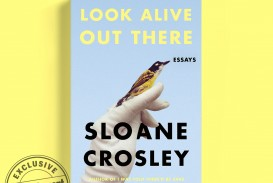 013 Essay Collection Example Sloane Crosley Shocking Best Pdf Collections 2019