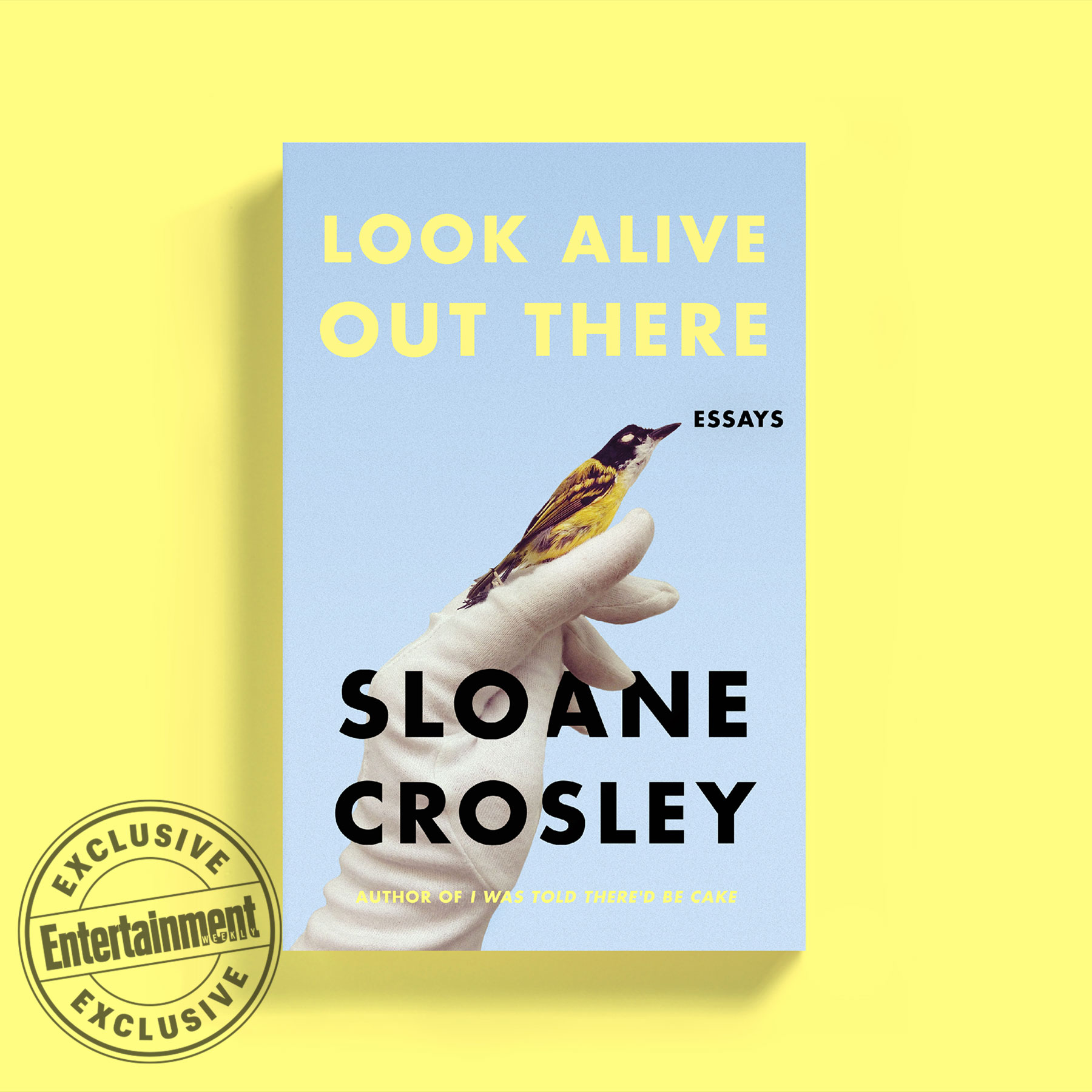 013 Essay Collection Example Sloane Crosley Shocking Collections For Students 2017 Best Pdf Full