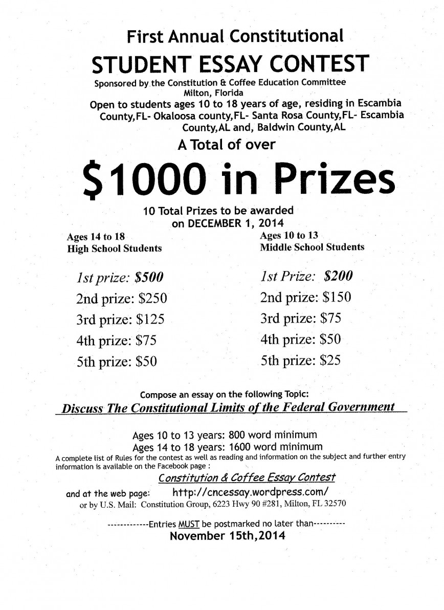 013 Essay Contest Flyer Jpeg Example Cheap Essays Breathtaking Online