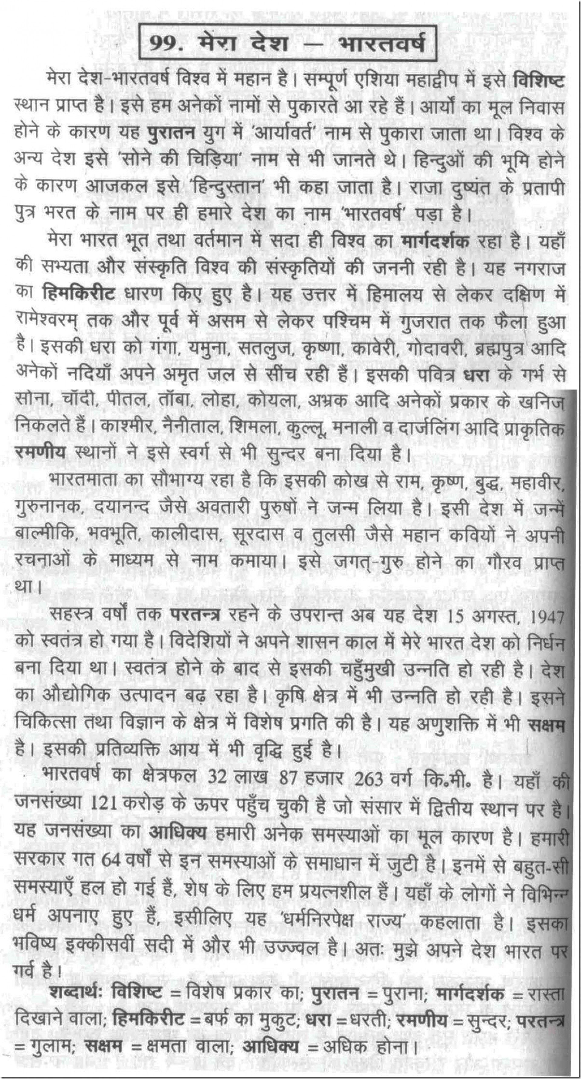 013 Essay Example 100099 Thumb Cleanliness In Sensational Hindi Is Godliness School 1920