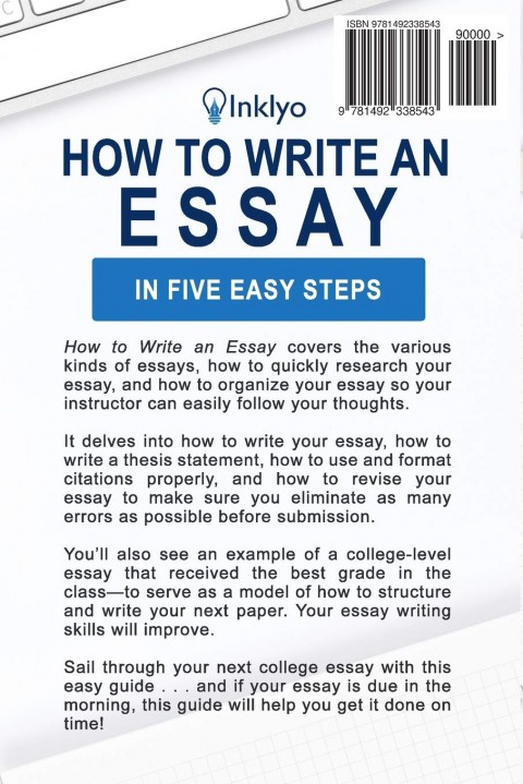 013 Essay Example 71v7ckw5pll Writing Striking A Creative About Yourself College Outline 5 Steps To 480