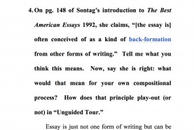 013 Essay Example American Striking Format Literature Topics Identity Titles