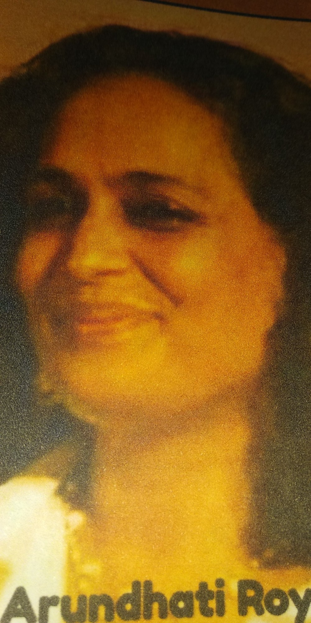 013 Essay Example Essays By Arundhati Roy Sensational Full