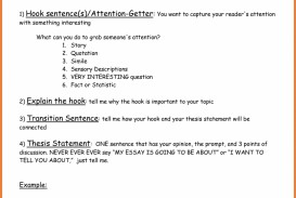 013 Essay Example Hook Sentences For Essays Unusual Examples Of Persuasive