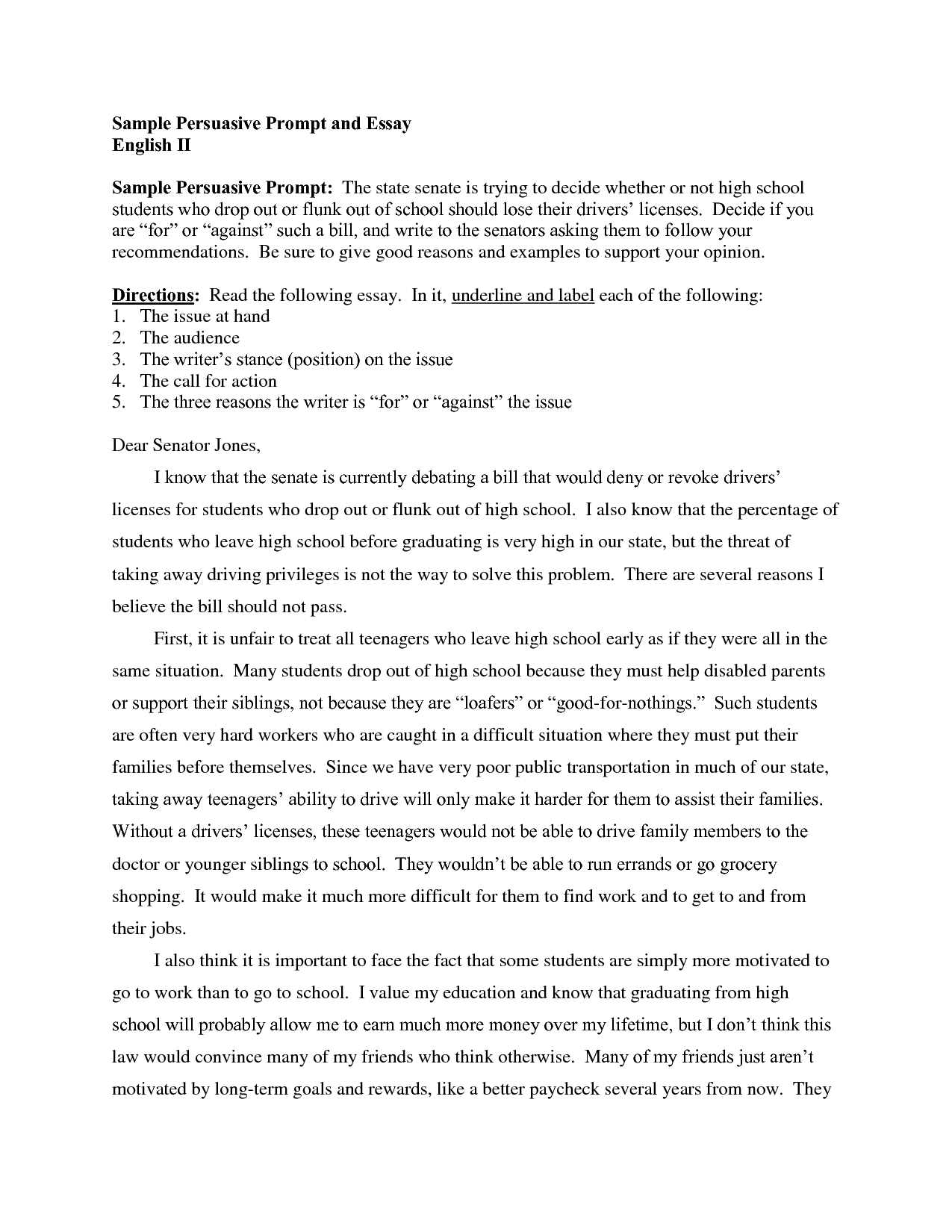 Persuasive essay sample high school