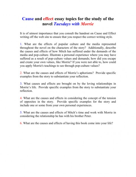 013 Essay Example On Tuesdays With Morrie 008010712 1 Unusual Analytical Reflection Paper Argumentative 480