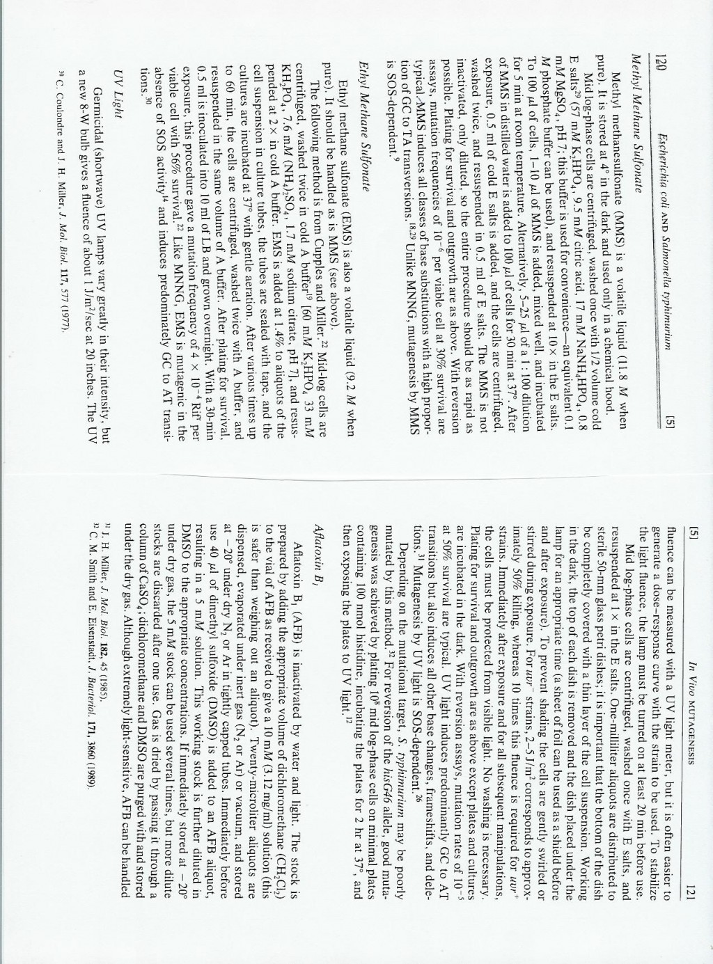 013 Essay Example Page 7 8 Awful 4 Structure Format In 3 Hours Large