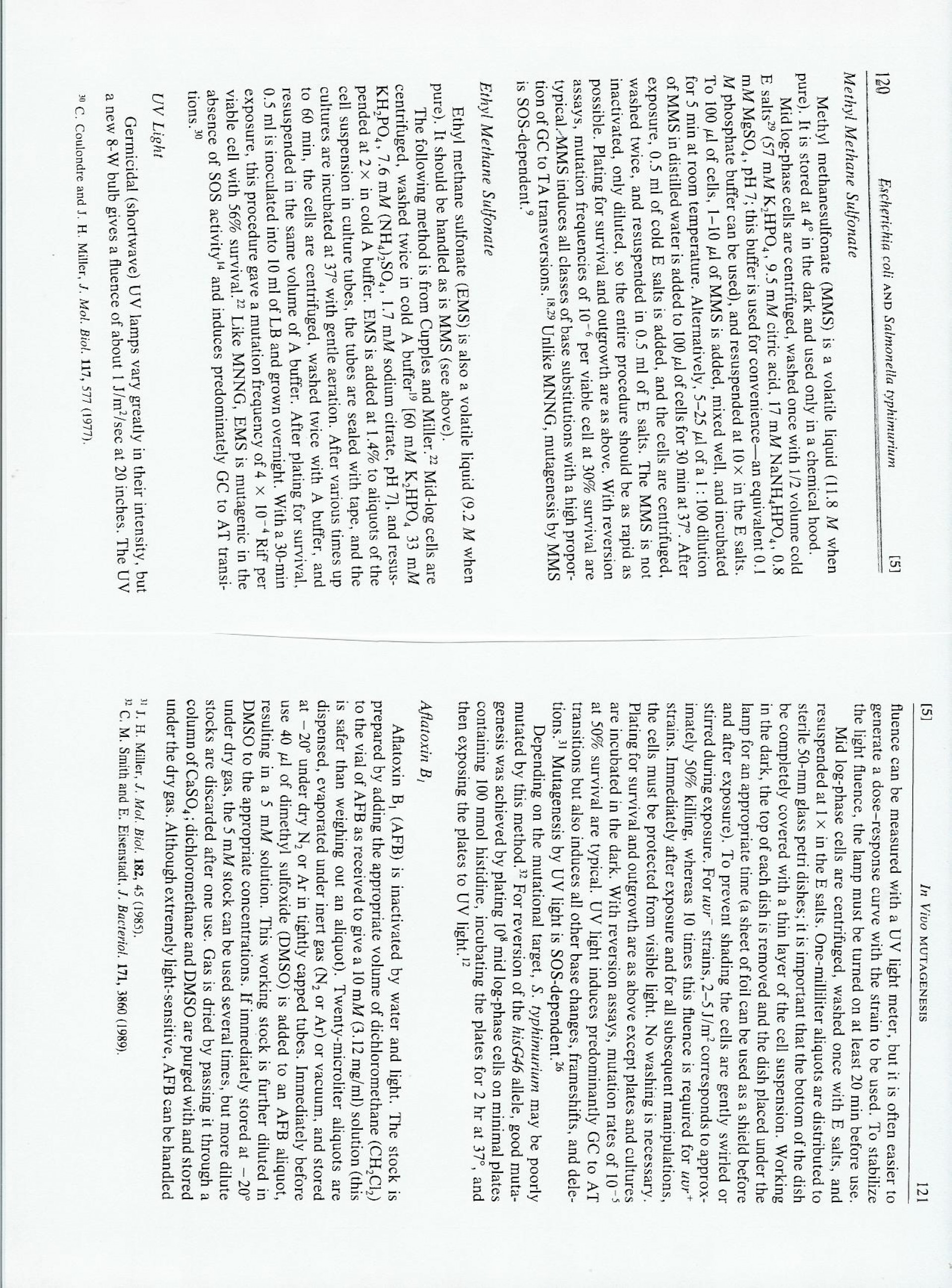 013 Essay Example Page 7 8 Awful 4 Structure Format In 3 Hours 1920