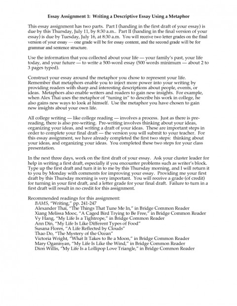 Family background essay