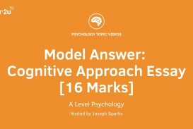 013 Maxresdefault Cognitive Essay Striking Neuropsychology Topics Learning Theory Psychology Questions