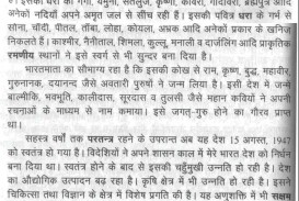 013 My Favourite Place In India Essay Example 100099 Thumb Surprising Favorite Tourist Hindi