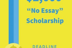 013 Niche No Essay Scholarship Marvelous Reddit Winners