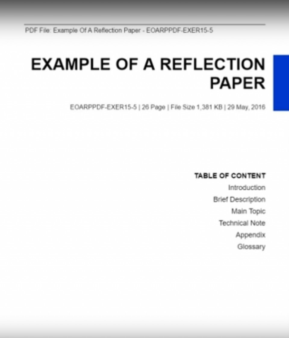 013 Reflective Essay Example Reflection Paper Unforgettable Examples About Life Pdf High School Students Apa 960
