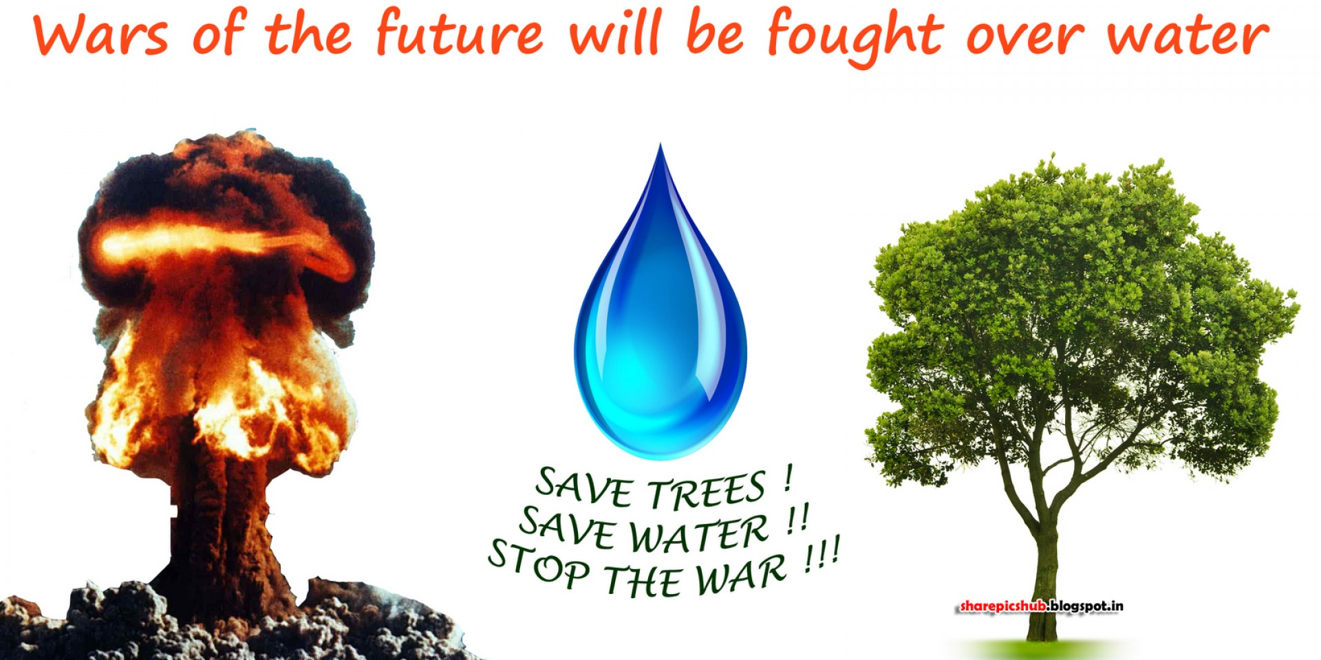 013 Slogan Save Tree Poster097 Essay Example How Can We Marvelous Trees To In Hindi Telugu 1920