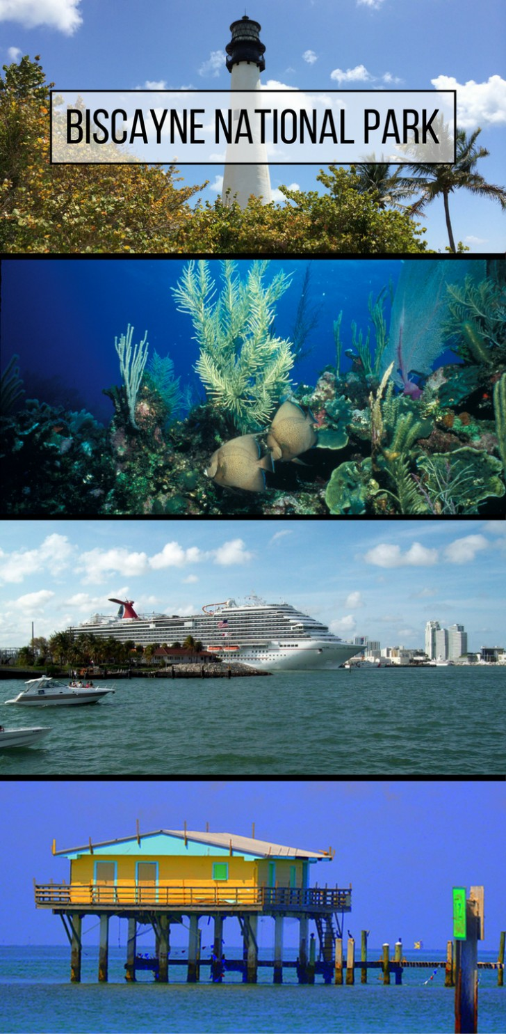 014 Biscayne National Park Essay Wonderful 728