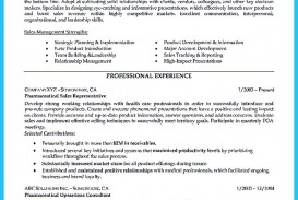 College Essay Writers Write My Template  Thatsnotus  College Essay Writers Example  Professional