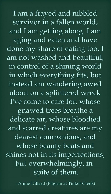 014 Essay Example Annie Dillard Essays Stirring Stunt Pilot Pdf On Writing This Is The Life