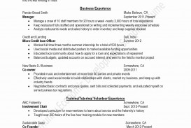 014 Essay Example Creative Resume Sample Lovely Writing Examples Fearsome Funny College Application Pdf