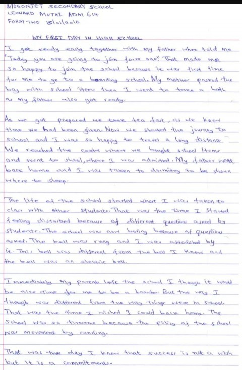 016 Essay Example First Day Of School ~ Thatsnotus