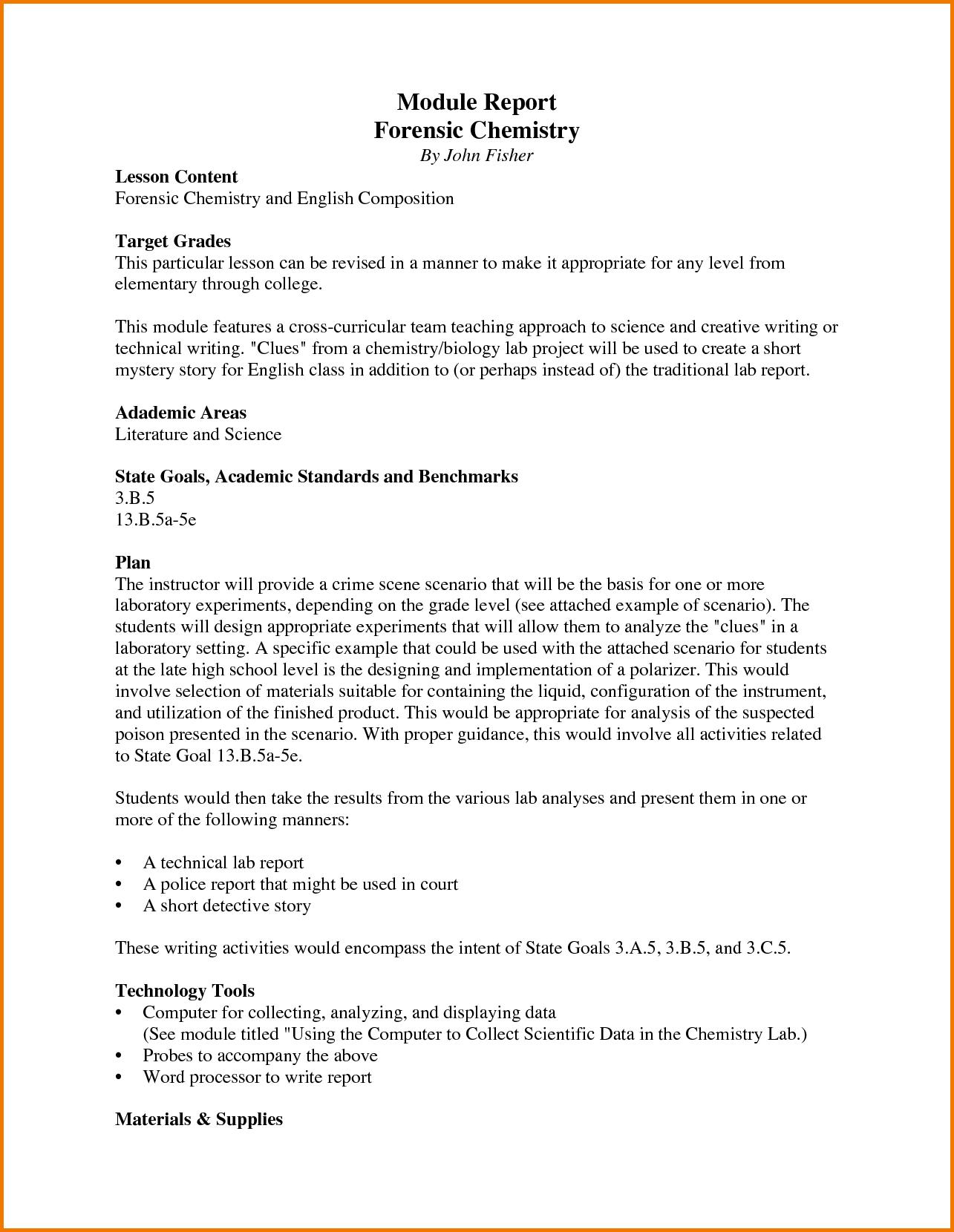 Essay report writing