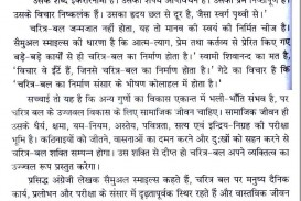 014 Essay On Electricity In Hindi Example Essays The Power Of Imposing Veto Youth Problem Language