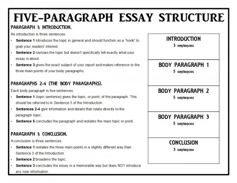 015 Animalreport1 Paragraph Essay Singular 5 Template For High School Example Doc 480