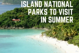 015 Biscayne National Park Essay Example Wonderful 320