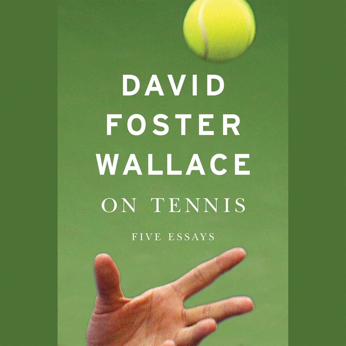 015 David Foster Wallace Essays Essay Example On Tennis Formidable Amazon And The Long Thing New Novels Cruise Ship Full