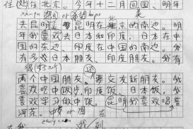 015 Essay Example Chinese Amazing Language Writing Letter Format Topics
