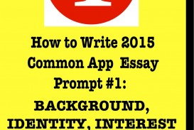 015 Essay Example Common App Prompts Rare 2015-16