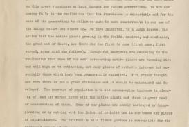 015 Essay Example Description Of Trees For Essays Striking