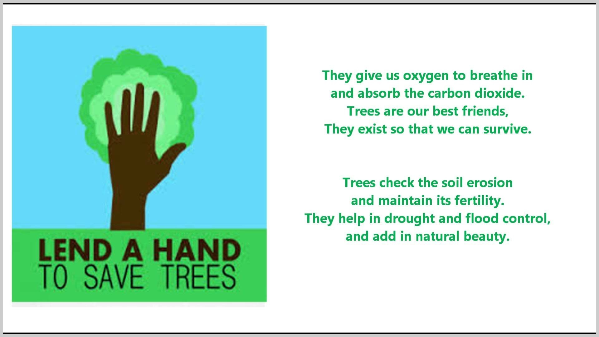 015 How Can We Save Trees Essay Example Of Our Best Friends Poem For Marvelous To In Hindi Telugu 1920
